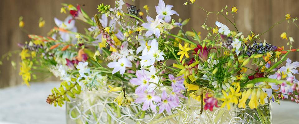 三宅花卉園